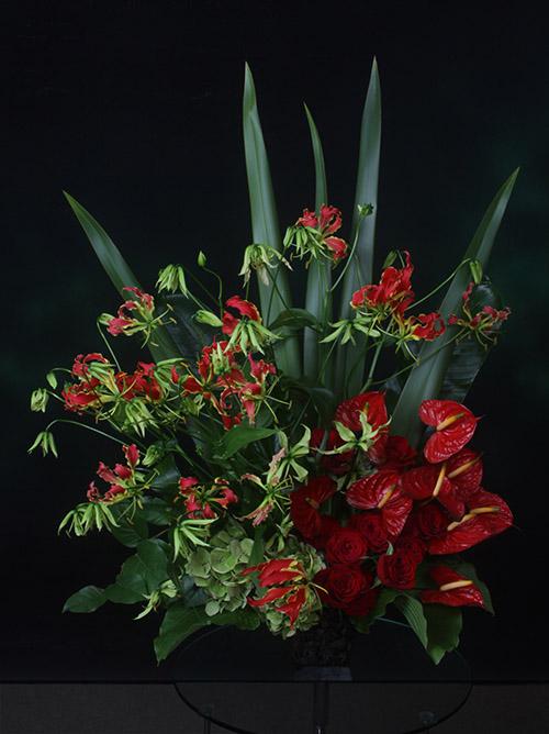 グロリオサの画像 p1_33