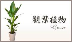 スタンド花 お祝い 観葉植物